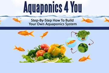 Aquaponics 4 You review (Includes the features and the Pros & Cons)